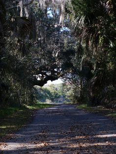 2013 Find Your Florida Photography Contest : Find Your Florida - Discover Palm Coast