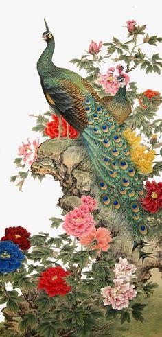 Aves, Pintura, Pintura, Pavão Imagem PNG