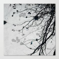 Winter Tree 2 Canvas Print by Mareike Böhmer Photography | Society6
