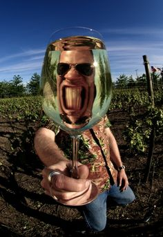 reflection in wine glass - Google Search LOL