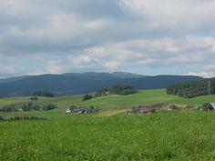 Blick zum Feldberg/Schwarzwald von Breitnau (Baden-Württemberg) aus. Letzte Schneeflächen Anfang Juli 2013!