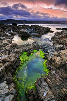 Photograph of Wellington Coast, New Zealand. by Landscape PhotographerMike Isaak The Beautiful Country, Beautiful World, Beautiful Places, Chatham Islands, Places To Travel, Places To Visit, Us National Parks, New Zealand Travel, Natural Wonders
