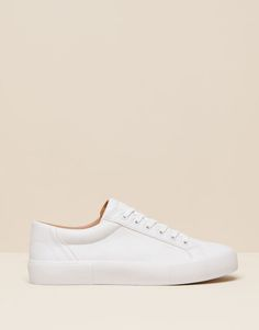Pull&Bear - mujer - zapatos mujer - bamba studio - blanco - 15720011-I2015