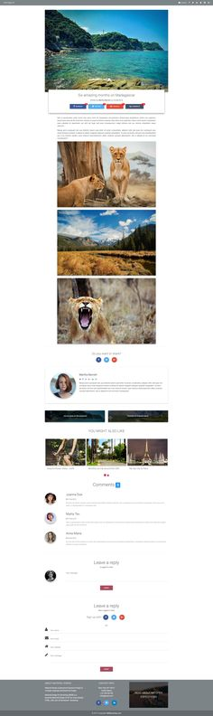 Fully responsive Material Design Blog post page template.