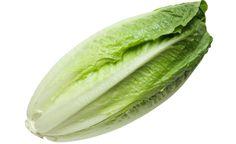 9 Health benefits of eating romaine lettuce