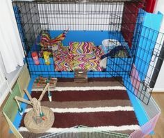 correx barrier for sides of puppy pen - Rabbits United Forum