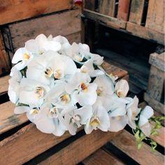 Buquê para noivas - cascata de orquídeas