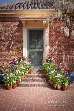 doors n flowers | Door with flowers. Filoli Gardens, California.