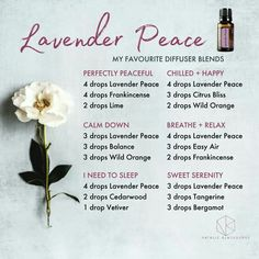 Doterra Lavender Peace (also known as Serenity) essential oil diffuser blends by Natalie Blackburne Vetiver Essential Oil, Essential Oil Perfume, Essential Oil Diffuser Blends, Essential Oil Uses, Doterra Diffuser, Doterra Essential Oils, Lavender Peace Doterra, Lavender Diffuser, Doterra Serenity