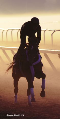 Going early to the track to see them warming up the horses at Saratoga.  Peaceful, beautiful horses, and early morning cup of coffee. Love Saratoga in August.