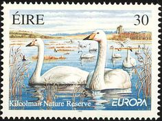 Common Pochard stamps - mainly images - gallery format