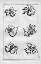 1770 - Ornament Garten Gärtnerei Blumen Floristik Jagd flowers Kupferstich