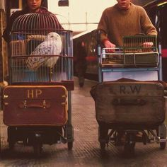 Platform 9 3/4 // Harry // Ron // luggage