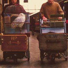 Platform 9 3/4 // Harry // Ron // luggage