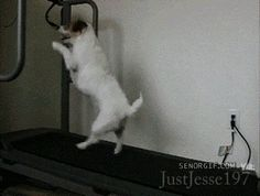 Get me off this treadmill