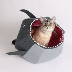 Great White Shark Cat Ball Cat Bed A Funny Pet Bed For Shark Week   Funny  Pets