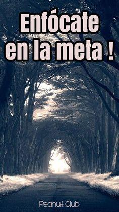 ENFÓCATE EN LA META