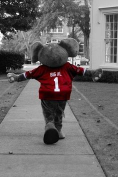 Roll Tide...Road to 16