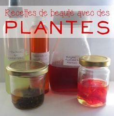 Maintenant que nous avons vu quelques techniques pour profiter des plantes, voici des idées de recettes utilisant l'infusion, le macérat, la teinture et les huiles essentielles.
