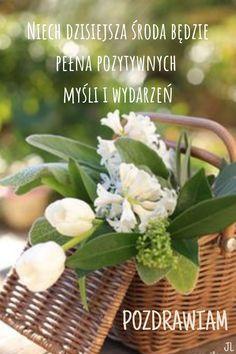 Vizsla, Good Morning, Wednesday, Table Decorations, Plants, Buen Dia, Bonjour, Plant, Good Morning Wishes