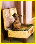 PROSD ESTERNAZIONI - La valigia delle vacanze. Come metti in valigia? L'umorismo ti aspetta qui!