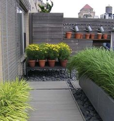 A terrace garden by NY architects Rogers Marvel.
