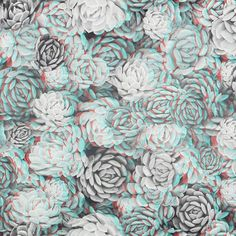 "A new acquisition ""Bloom"" is part of a collection of 3-D or anaglyph wallpapers produced as a collaboration between @twenty2wallpaperstudio and Pratt Institute.  While many people think of 3D or anaglyph imagery as a recent phenomenon the technology was actually developed in the 1850s. The design of this wallpaper inspired by photographs of cacti is attractive when viewed both with and without the 3D glasses though viewing the paper through the 3D glasses gives the wallpaper a whole new…"