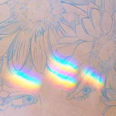 WEBSTA @ missrachelsilva - Good morning! 🌈 the sun came through my front door yesterday and cast this rainbow blessing on my current illustration in progress. This time of year, around 7pm every day, the sun hits the glass on my door just right and send these rainbows into my living room. The amount of joy and energy this gives me I can not express, but it is this beauty of refracted light that comes all the way from our sun into my little home that inspires me. This is what drives my art…
