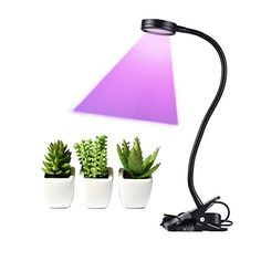 FonPeak LED Grow Light 10W Full Spectrum 450nm 660nm Plant Lamp Lihgts for Indoor Plants with 360Flexible Gooseneck & Desk Clip-ons for Greenhouse Hydroponic Garden Home Office Planting Enthusiasts Review https://ledgrowlights.life/fonpeak-led-grow-light-10w-full-spectrum-450nm-660nm-plant-lamp-lihgts-for-indoor-plants-with-360flexible-gooseneck-desk-clip-ons-for-greenhouse-hydroponic-garden-home-office-planting-enthusia/
