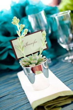 potted favors