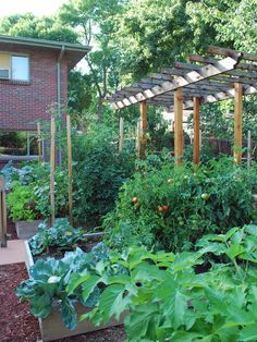Raised Bed Vegetable Gardens Design