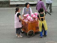 Japan - interesting way to carry children on a school trip :)