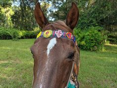 Epic Equine Browband - Cloth and SeedBeed Browband for larger horse - Ready to Ship My Little Baby, Red Hats, Fedora Hat, Horse Tack, Beading Patterns, Hand Sewing, Seed Beads, Pony, Textiles