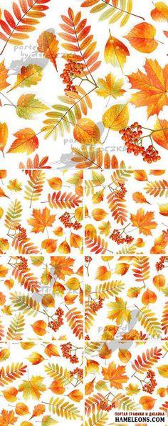 Бесшовные осенние фоны с листьями и гроздьями рябины - Векторный клипарт   Autumn leaves vector