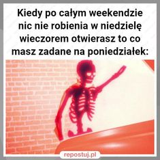 Very Funny Memes, Wtf Funny, Polish Memes, Everything And Nothing, Best Memes, I Laughed, Funny Animals, Haha, Google