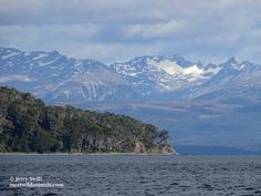 Le passage du cap Horn - Meet Wild Animals In Patagonia, He Is Able, Wild Animals, Horn, Trek, Chile, Remote, Coast, The Incredibles