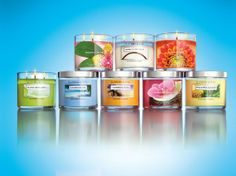 While in college, I worked at White Barn Candle Co. That experience has forever made me a diva concerning candles. Slatkin & Co. are the only that I'll use - they burn slow & are very fragrant, plus, they have scents for every season! I totally agree.