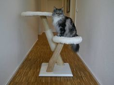Your cats will love their new climbing paradise!  A large, heavy plywood plate is used as base plate, which ensures a stable stand. The solid wood is polished and partially wrapped in sisal, we ensure the natural shape of the wood not to change. The sleek design of the cat tree is created by the crossing two strains. The cats can lie on 2 sunbathing surfaces or jump levels and climbing. The upper deck surfaces have a diameter of 48 cm and the jump helps 38 cm.  The scratching is handcrafted…