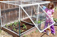 g*rated: Square Foot Garden & Hinged Door Cage - Alles über den Garten Veg Garden, Vegetable Garden Design, Garden Fencing, Garden Boxes, Vegetable Gardening, Terraced Vegetable Garden, Fairy Gardening, Container Gardening, Terraced Landscaping