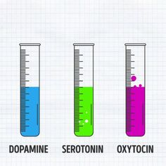 Animated gif showing the three hormones and their level during Anxiety…