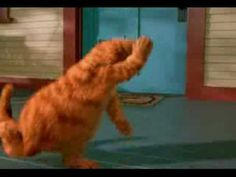 YouTube - Garfield Dancing wooly bully remix!