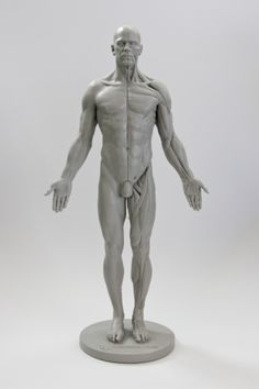 Another fantastic fuck-ton of male anatomy references. [From various sources.]