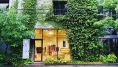 那天下午東京雨不停剛好散步遇到這家店進去避雨出來到對街拍下她的綠意盎然 . #babaghuri #清澄白河 #streetview #shopview . #igers #igersoftheday #igersjapan #Tokyo #like4like #20170618