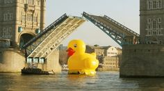 Tower Bridge was forced to open for a giant 50 foot rubber duck floating down the Thames today.