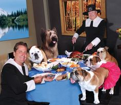 Happy Thanksgiving from me, Rose, Sully, Wally, Norman the Scooter Dog along with Dick Van Patten and Jimmy Van Patten from Natural Balance Pet Foods!