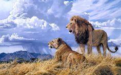 animals cats lion painting art landscape nature wildlife africa grass predator couple love sky clouds rain weather wallpaper background