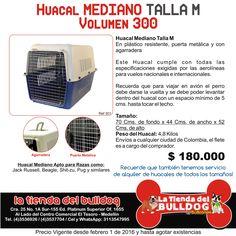 Cali, Facebook, Pereira, Store, Dogs, Gatos, Brussels