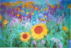 """In the Morning""; field of sunflowers; altered photo.  (Etsy: dahliahousestudios)"