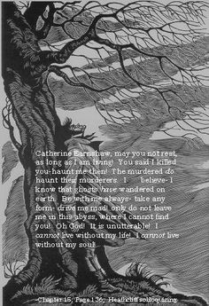 Essay on wuthering heights about heathcliff