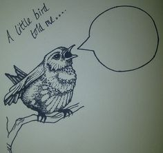 'A Little Bird Told me' Hand Drawn Card £2.50